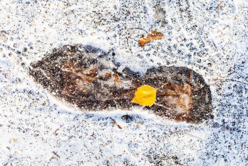 Bevroren die voetafdruk op weg met sneeuw wordt behandeld royalty-vrije stock fotografie
