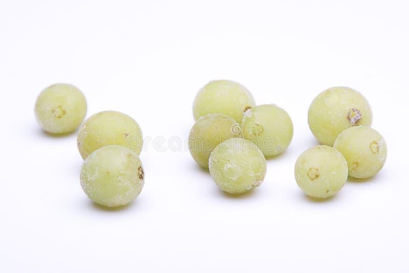 Bevroren druiven stock afbeelding