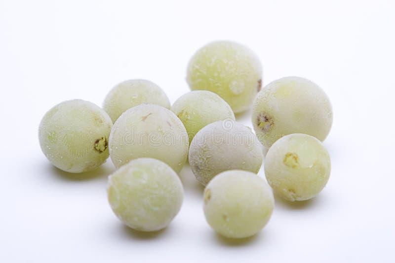 Bevroren druiven royalty-vrije stock fotografie