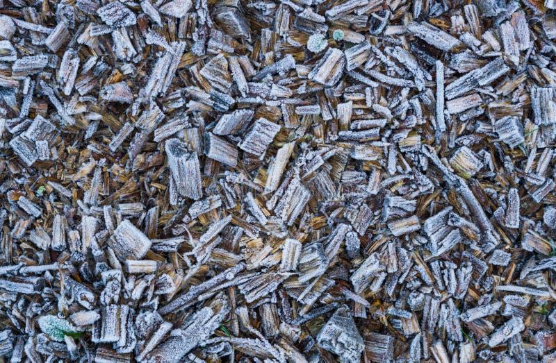 Bevroren houten die spaanders in de textuur van sneeuwkristallen, een achtergrond van de wintertijdtuin worden behandeld royalty-vrije stock afbeeldingen