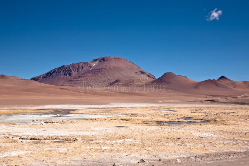 Bevroren lagune in woestijn Atacama stock foto's