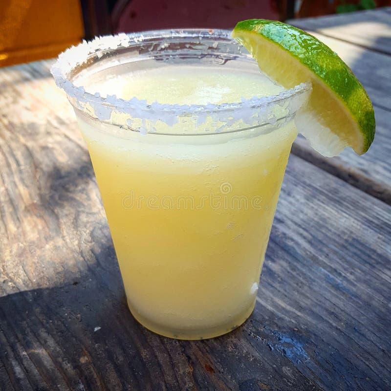 Bevroren Margarita stock afbeeldingen