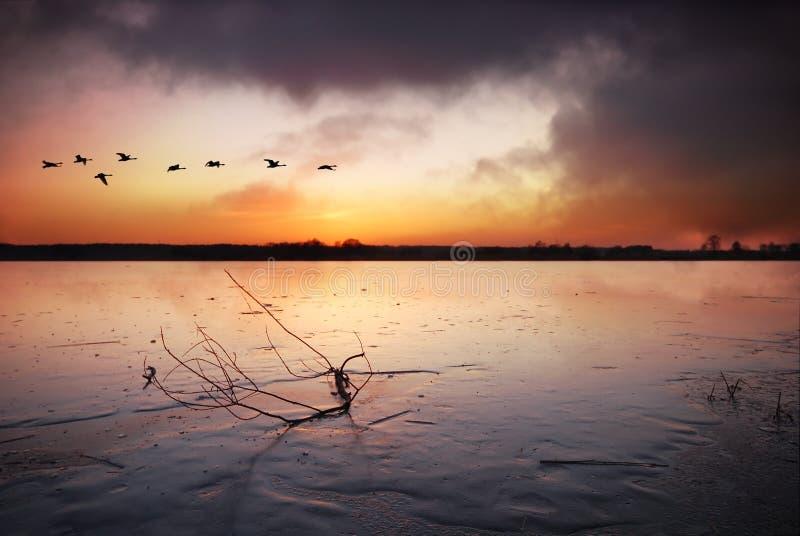 Bevroren meer bij zonsondergang stock fotografie