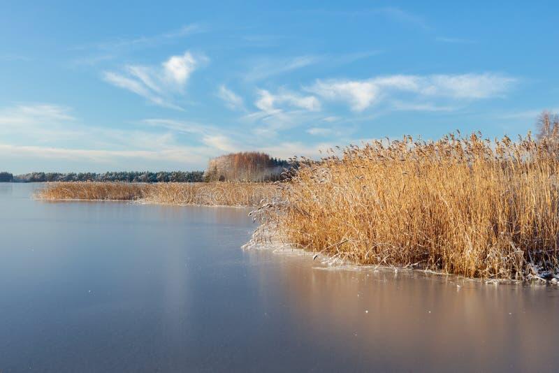 Bevroren meer op een heldere de winterdag royalty-vrije stock fotografie