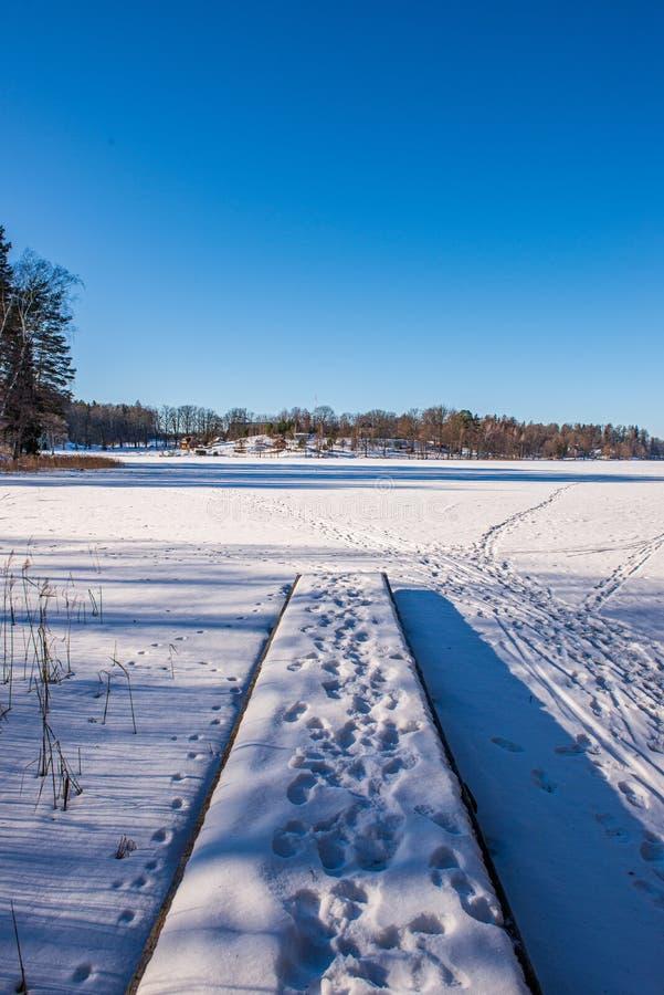 bevroren meerkust in de winterplatteland stock foto's