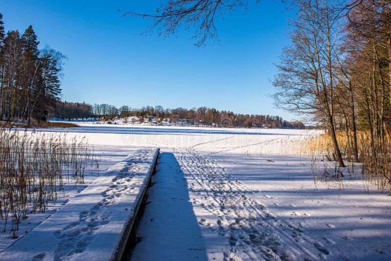 bevroren meerkust in de winterplatteland royalty-vrije stock foto