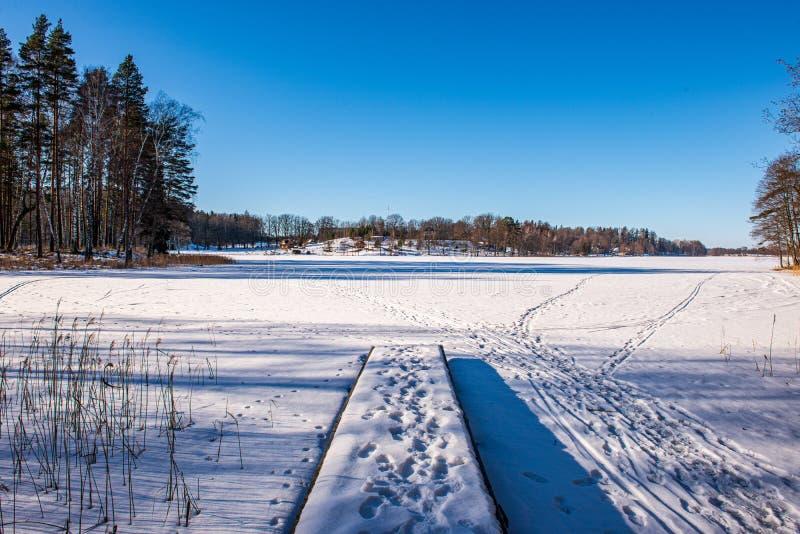 bevroren meerkust in de winterplatteland stock foto