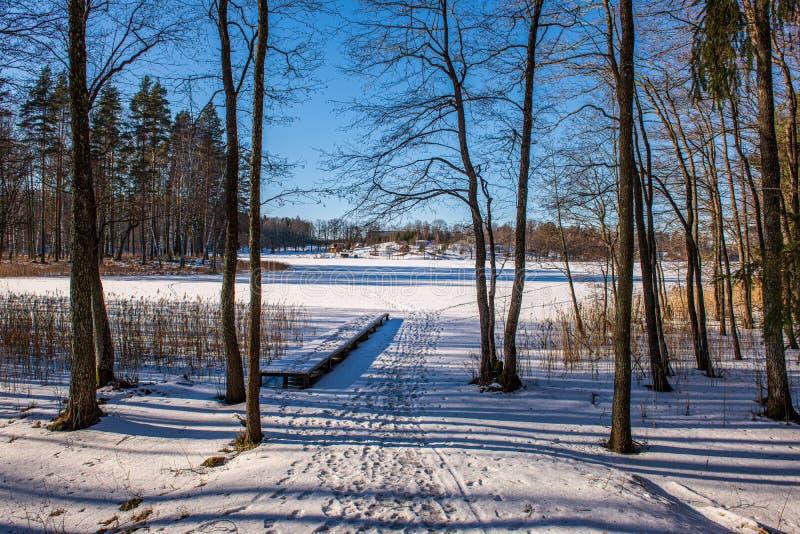 bevroren meerkust in de winterplatteland royalty-vrije stock fotografie