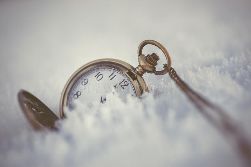 Bevroren naaldtakken met zakhorloge op de witte winter, de winter en gelukkige nieuwe jaarachtergrond stock afbeeldingen