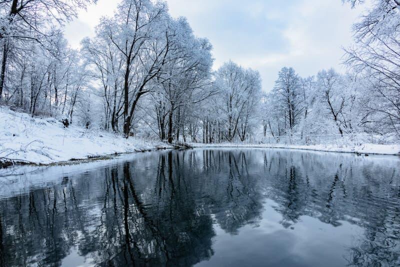 Bevroren niet vijver in de winter royalty-vrije stock foto's
