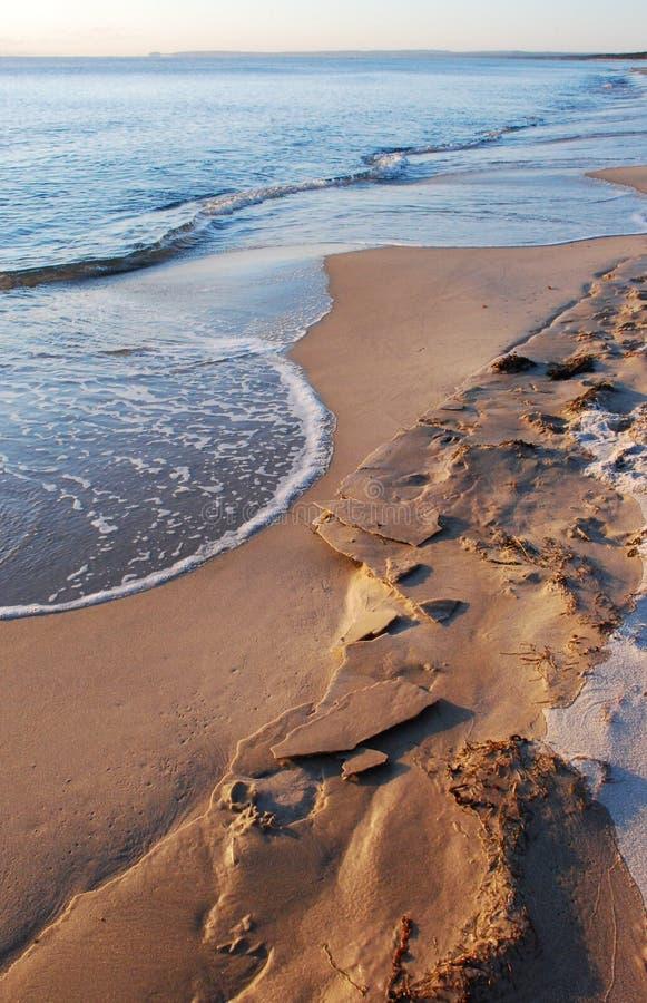 Bevroren zand bij het strand royalty-vrije stock foto's
