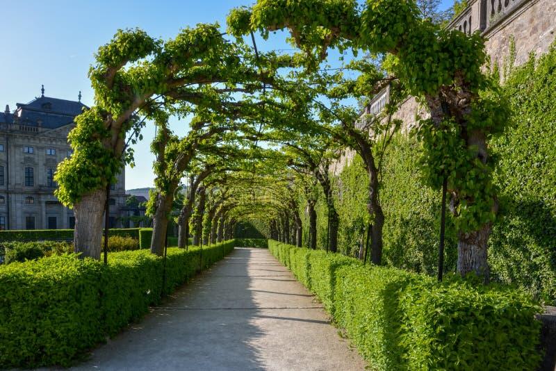 Bevuxen gångbana i borggårdträdgården av den Wuerzburg residen arkivbild