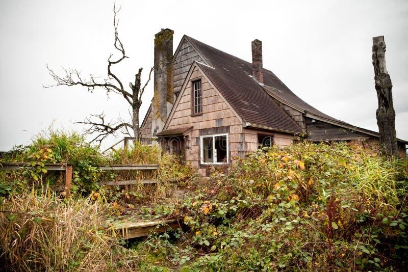 bevuxet övergivet hus royaltyfri foto