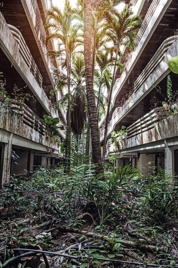 Bevuxna byggnader för djungel royaltyfri fotografi