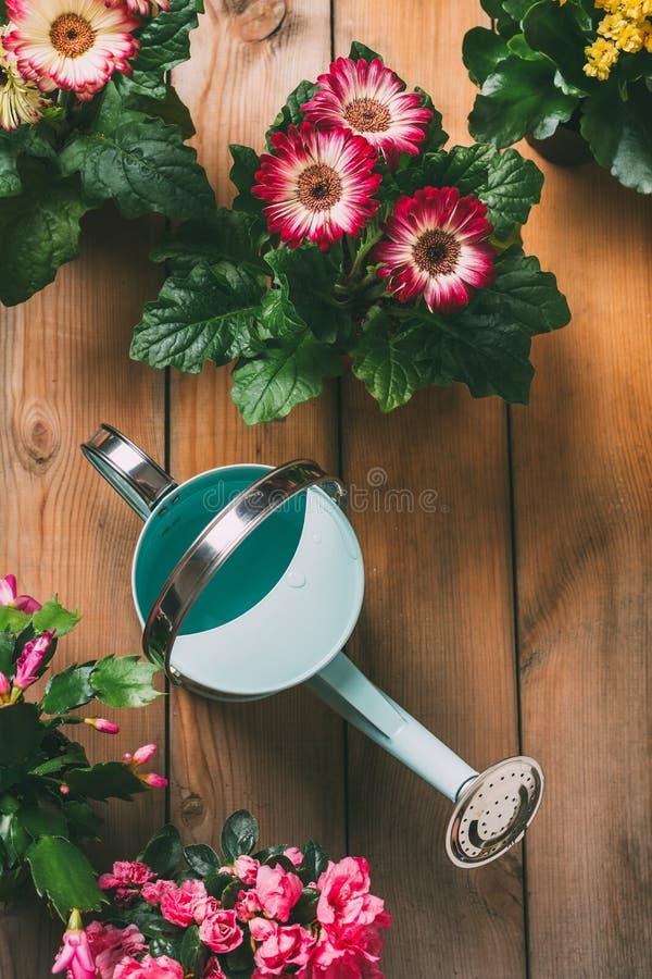 Bewässerungsdose mit Blumen stockbilder
