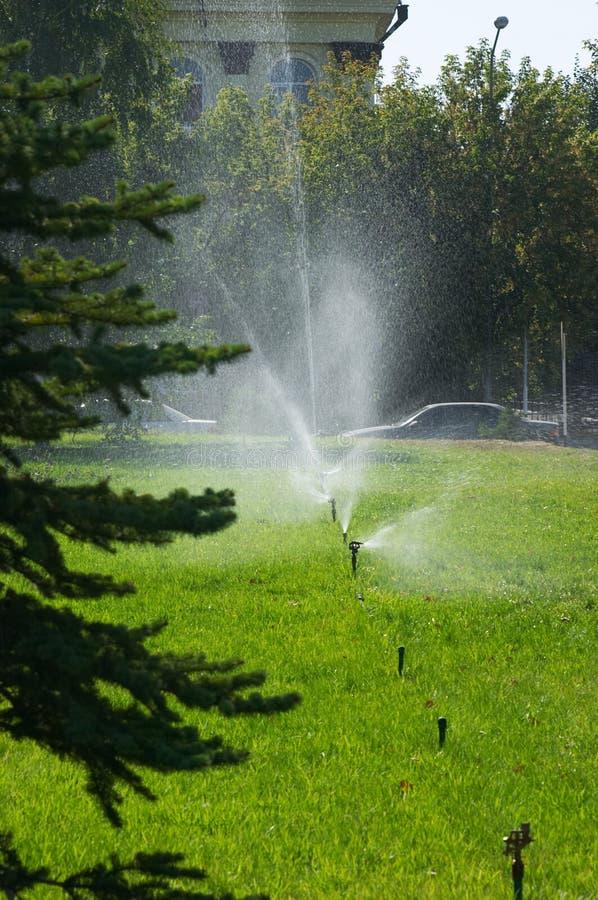 Bewässerung lizenzfreie stockfotos