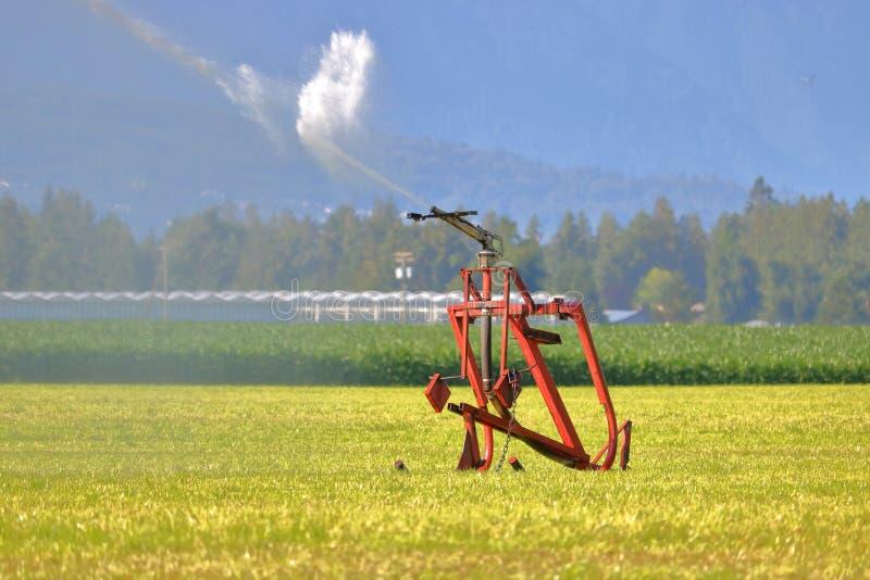 Bewässerungs-Schlauch der hohen Leistung stockbild
