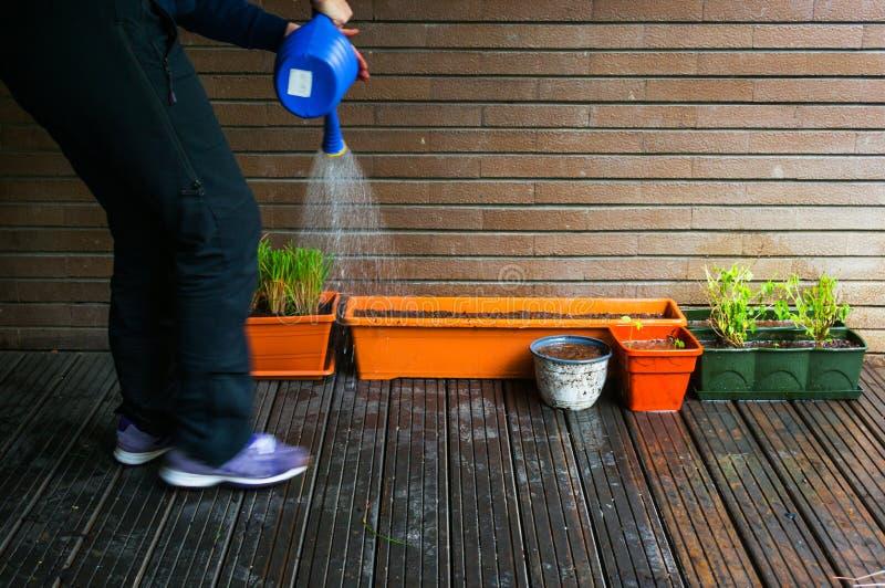 Bewässerungsanlagen lizenzfreies stockfoto