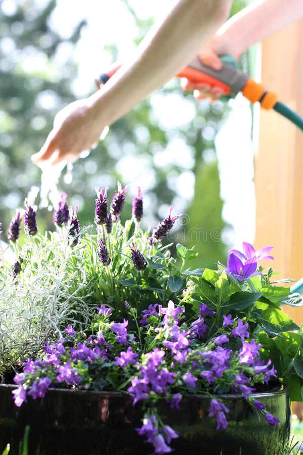 Bewässerungsanlagen stockfotos