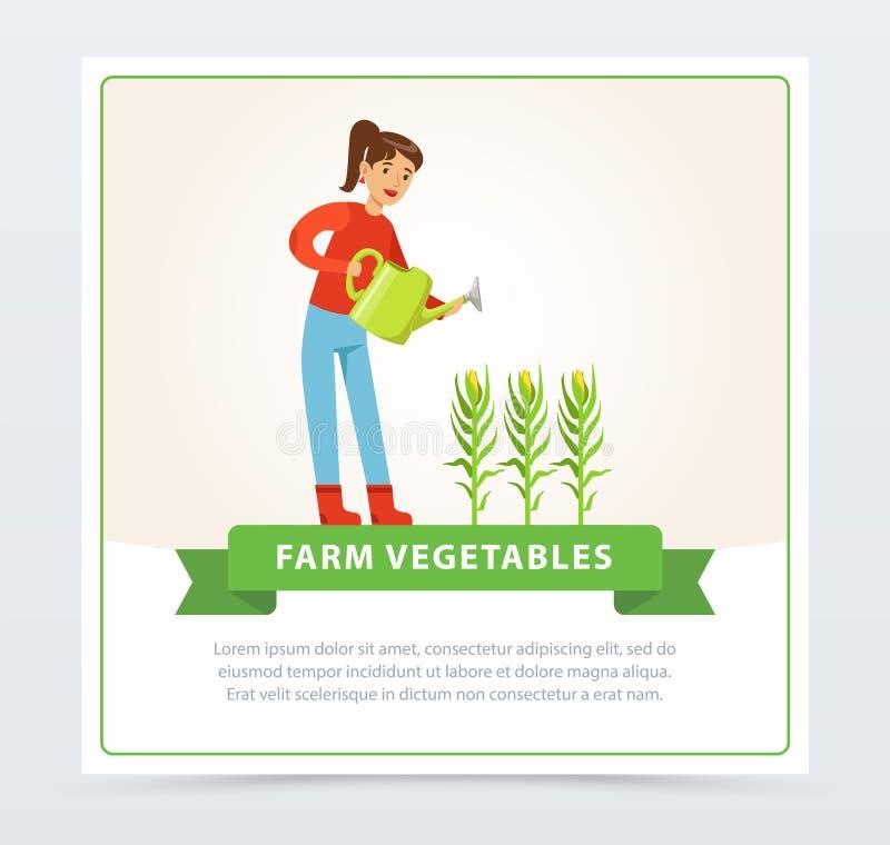 Bewässerungsmaispflanzen des Frauenlandwirtcharakters lizenzfreie abbildung