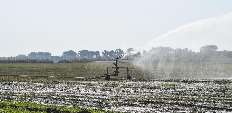 Bewässerungssystem auf dem Gebiet von Melonen Bewässerung der Felder sprenger lizenzfreies stockbild