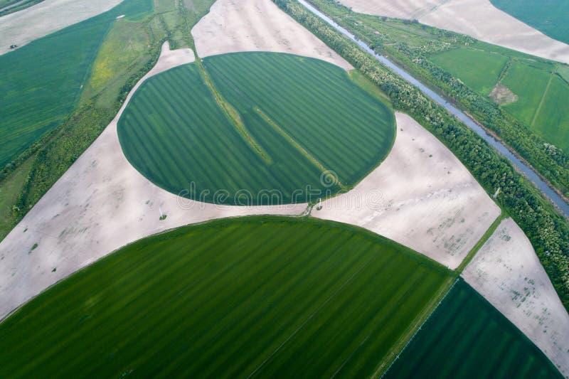 Bewässerungssystem auf dem Weizengebiet lizenzfreie stockfotografie