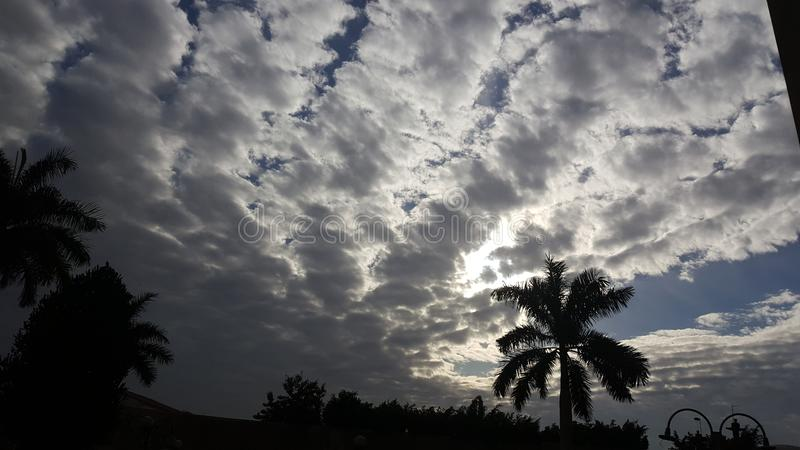 bewölken Sie den winteriscoming Tageshimmelmorgen-Palmesonnenuntergang stockbild