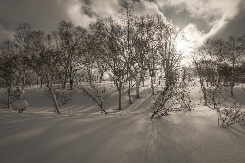 Bewölkte Gebirgslandschaft Snowy nahe Goshiki Onsen lizenzfreie stockfotos