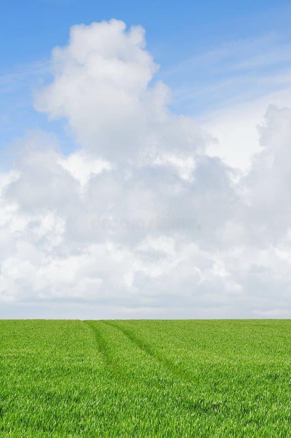 Bewölkter Himmel über Ackerland lizenzfreies stockbild