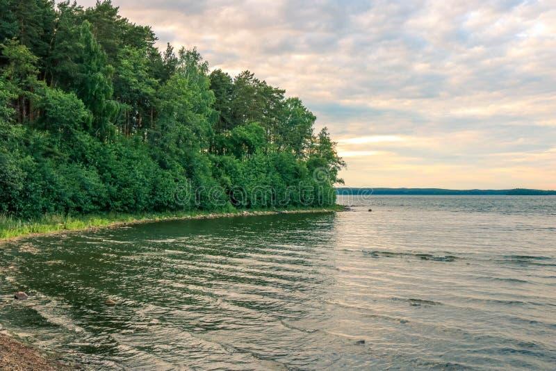 Bewaldete Küste von einem ruhigen See unter einem bewölkten Himmel Ost - europäische Landschaft lizenzfreies stockbild