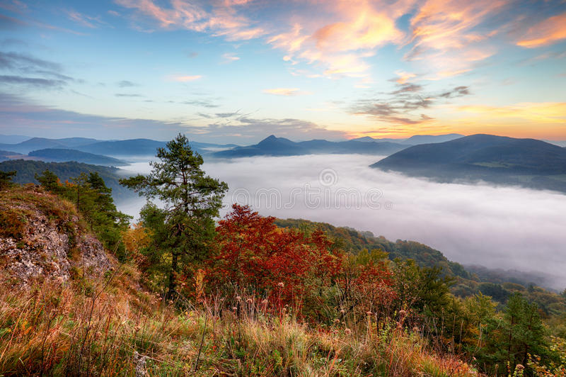 Bewaldeter Berghang im Nebel in einer szenischen Landschaft stockfotografie