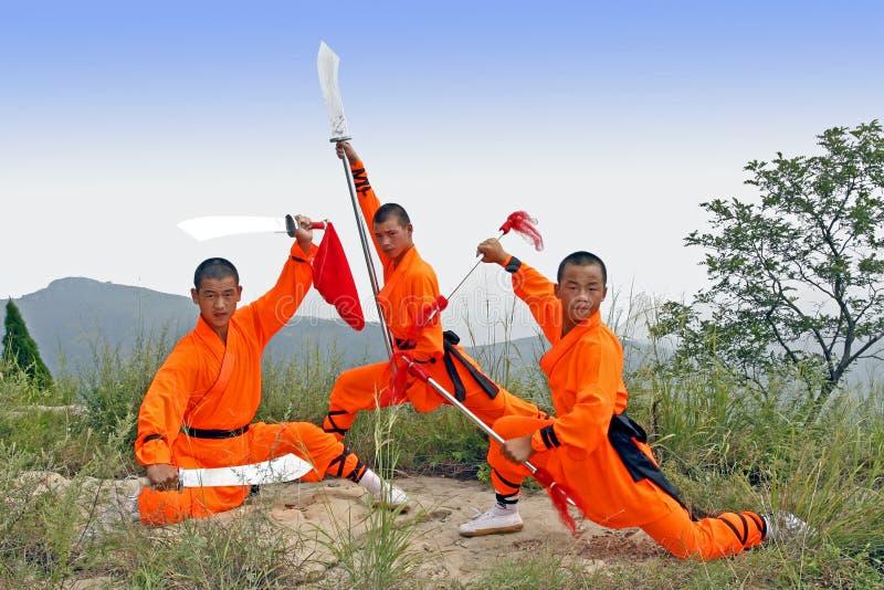 Bewapend gevecht. stock fotografie