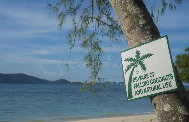 Beware των μειωμένων καρύδων και του φυσικού σημαδιού ζωής στοκ φωτογραφία με δικαίωμα ελεύθερης χρήσης