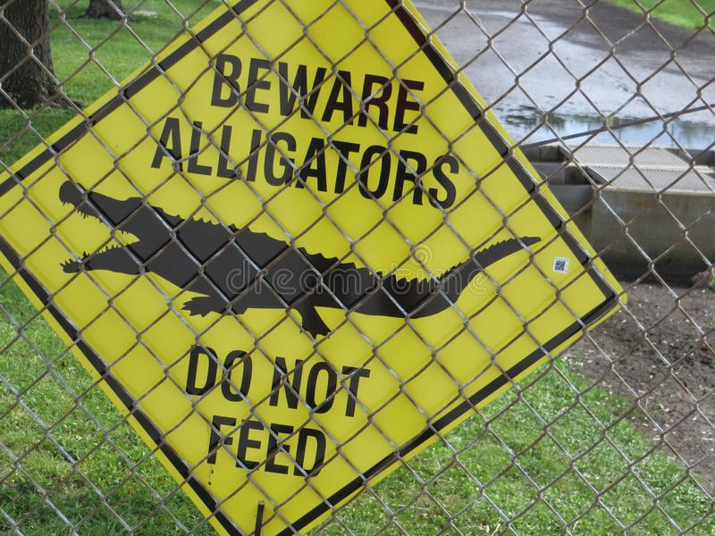 Beware Alligators sign. Yellow warning sign on a chain link fence: Beware alligators. Do not feed. In background a retention pond royalty free stock photos