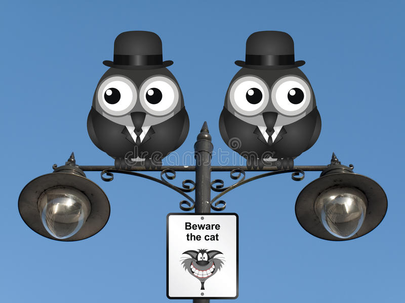 Beware the Cat. Comical beware the cat sign with watchful birds perched on a lamppost against a clear blue sky stock illustration