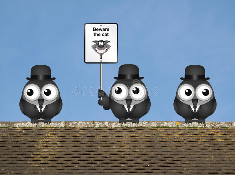 Beware the Cat. Comical beware the cat sign with watchful birds perched on a rooftop against a clear blue sky royalty free illustration