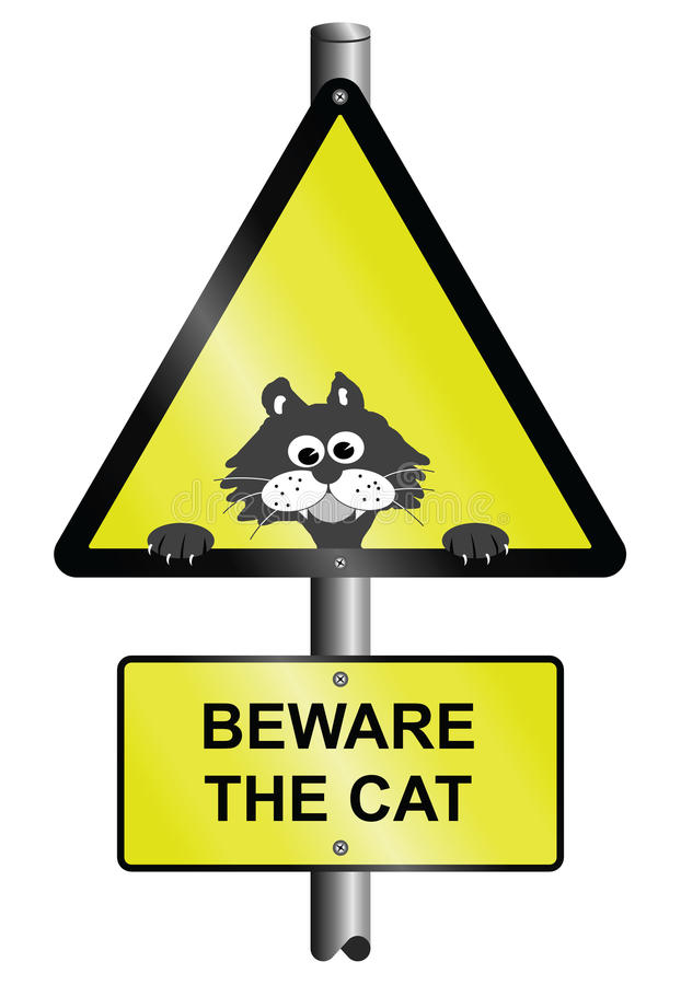 Beware o gato ilustração do vetor