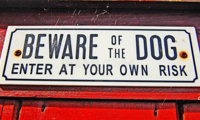 Beware van de hond royalty-vrije stock foto's