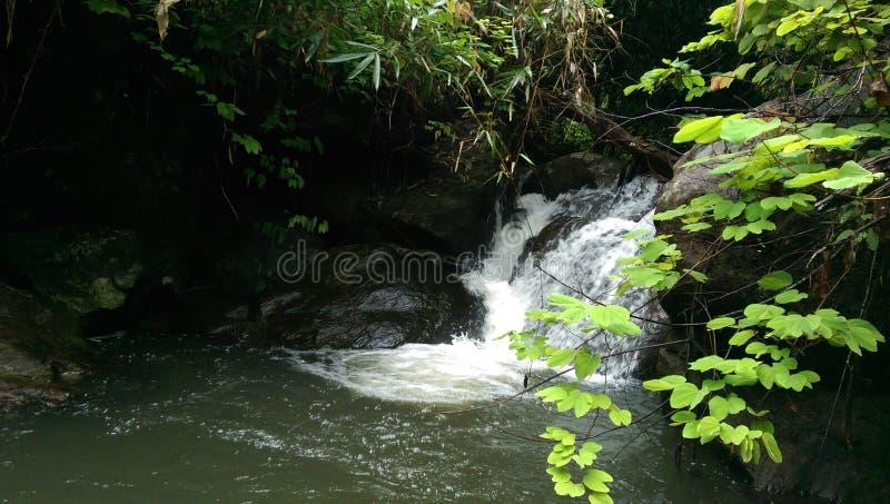 Bewegliches htc Schuss des Wasserfalles lizenzfreie stockbilder
