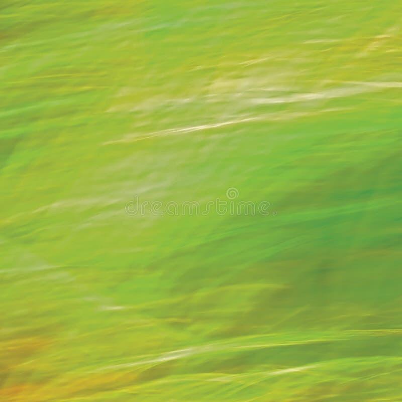 Bewegung unscharfer heller Wiesen-Gras-Hintergrund, abstraktes Grün, Gelb, Amber Horizontal Texture Pattern Copy-Raum stockbilder