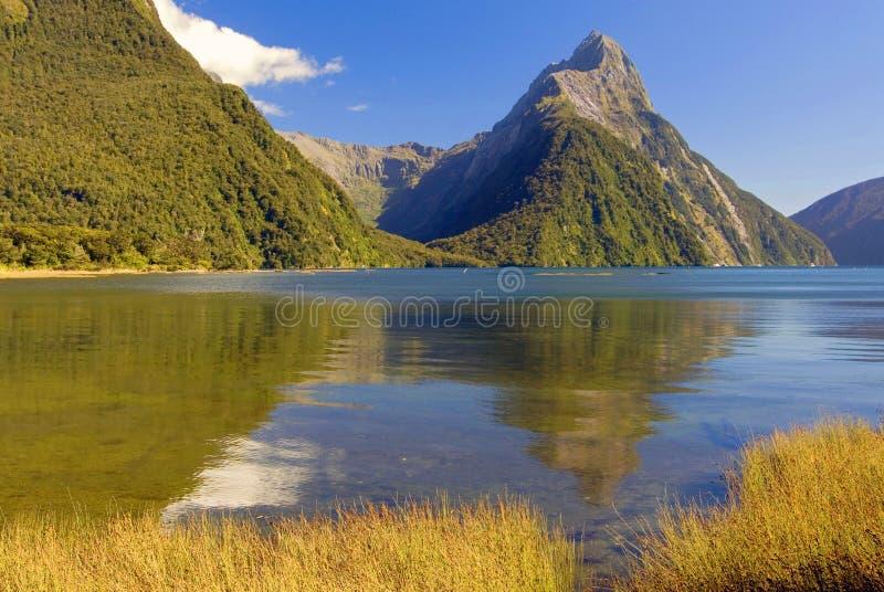 Bewerk Piek in Milford-Geluid in verstek, het Nationale Park van Fiordland, Zuideneiland, Nieuw Zeeland stock foto
