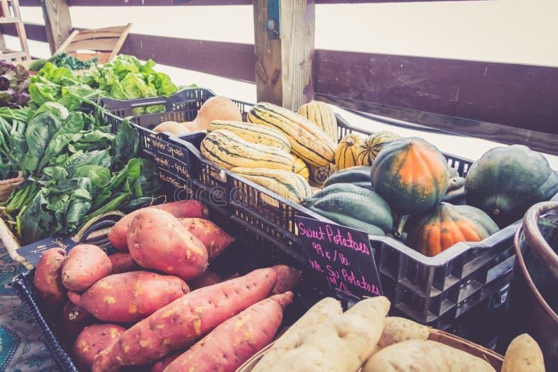 Bewirtschaften Sie frische Kartoffeln und Kürbis auf Anzeige am Landwirtmarkterntefest stockfotos