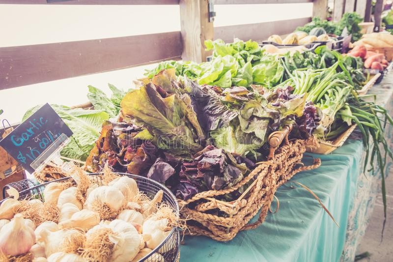 Bewirtschaften Sie Frischgemüse und Kopfsalate auf Anzeige am Landwirtmarkterntefest lizenzfreie stockfotografie
