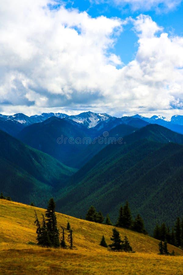 Bewolkt landschap in bergen, Olympisch Nationaal Park, Washington, de V.S. stock foto's