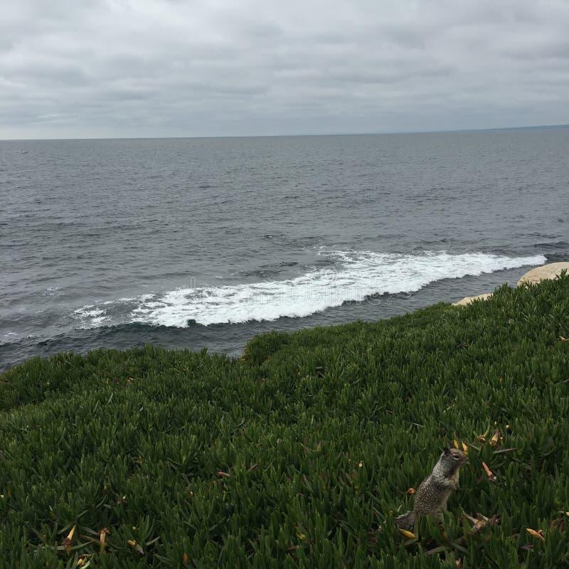 Bewolkt Strand stock afbeeldingen