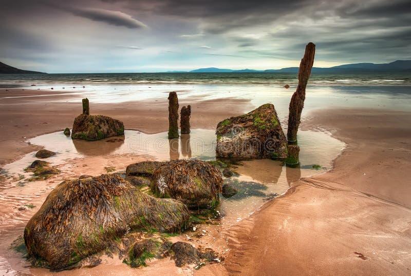 Bewolkt strand in Ierland. stock fotografie