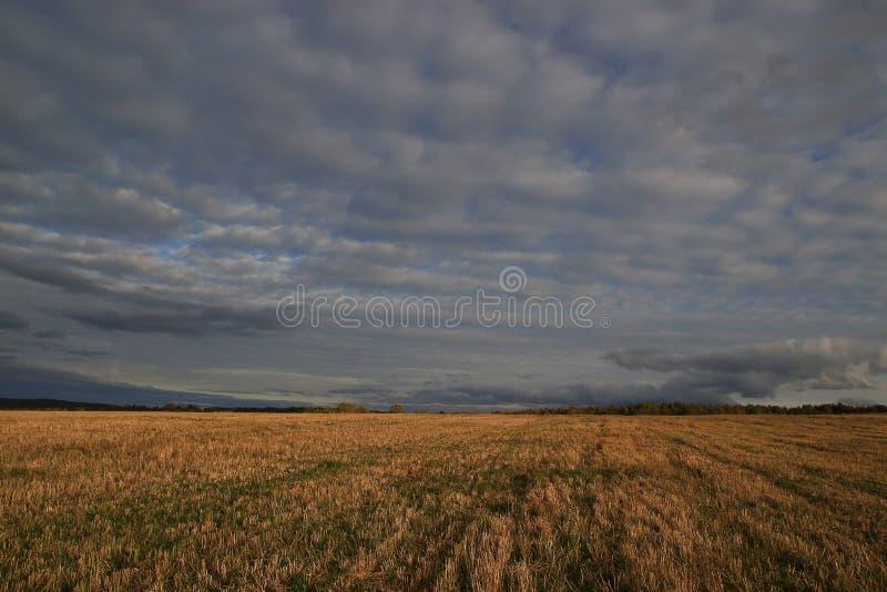 Bewolkt weer en wolken, hellend roggegebied royalty-vrije stock afbeelding