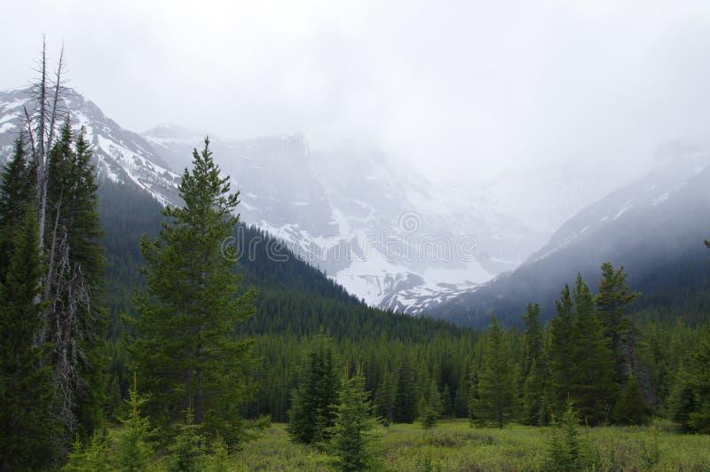 Bewolkte bergen in Kananaskis, Westelijke Alberta Canada royalty-vrije stock foto's