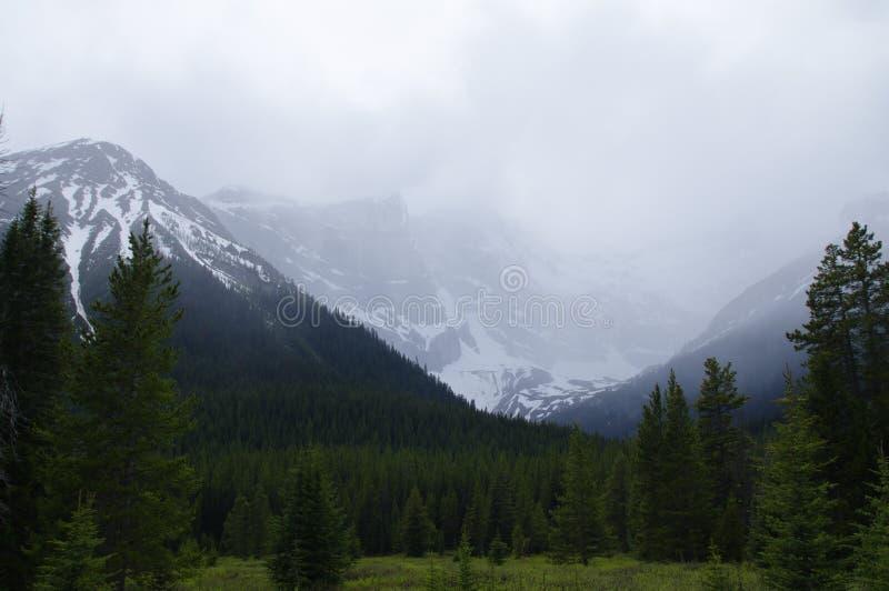 Bewolkte bergen in Kananaskis, Westelijke Alberta Canada stock foto's
