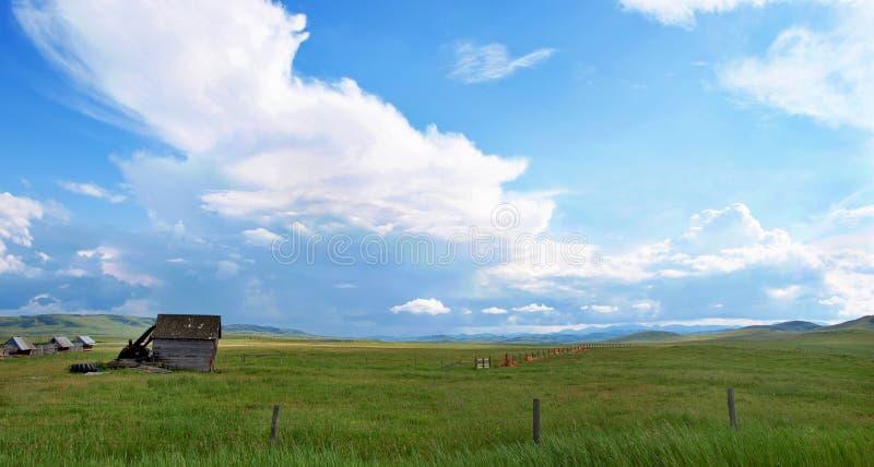 Bewolkte blauwe hemel over een groen grasgebied stock afbeeldingen